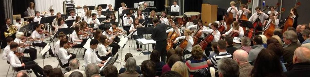 - Friends of Southampton Youth Orchestras